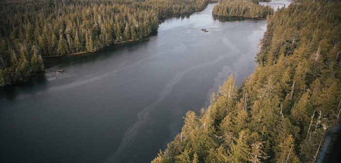 Sheen is visible on the water on Oct. 18 near the site of the Nathan E Stewart grounding. Canadian coast guard photo.