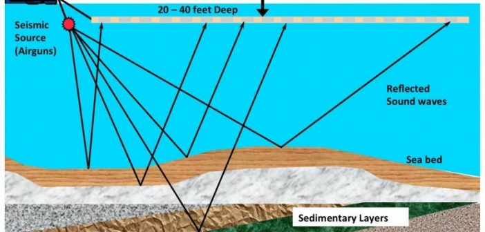 An illustration of seismic surveys. American Petroleum Institute.