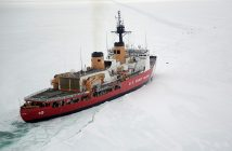 The Coast Guard Cutter Polar Star cuts through Antarctic ice in the Ross Sea near a large group of seals as the ship's crew creates a navigation channel for supply ships, Jan. 16, 2017. USCG photo.