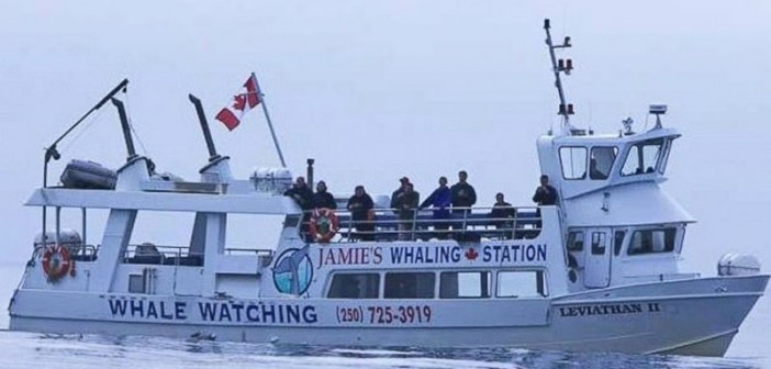 Six passengers died when the tour boat Leviathan II was capsized by a wave Oct. 25, 2015. Jamie's Whaling Station photo.