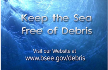 BSEE image