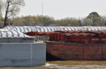 Barge grain movements on the inland waterways are expected to remain strong into the harvest season. David Krapf photo