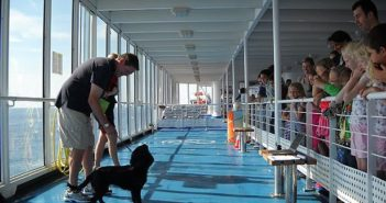 A dog show in July 2014 on the ferry Cap Finistère in the English Channel. Brittany Ferries photo.