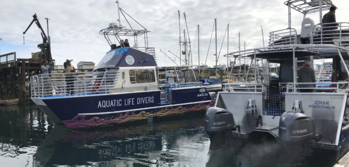 The new dive vessels will be showcased during a grand opening ceremony on Nov. 3. Armstrong Marine USA photo