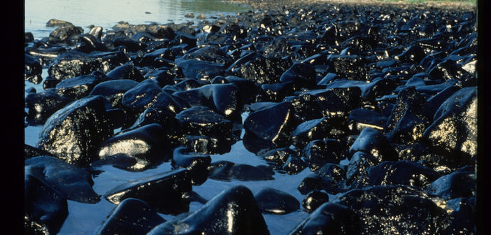 The Exxon Valdez ran into a well-known reef in Prince William Sound, Alaska, in 1989 rupturing eight cargo tanks, which began pouring oil into the water at an estimated rate of 20,000 gals. per hour. ARLIS photo