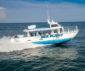Metal Shark delivers excursion boat to Florida, expands into Peru