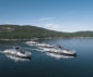 Damen lands repeat order from BC Ferries